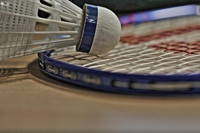Aktivitaeten Badminton